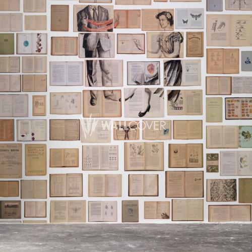 EKA-04 Biblioteca by Ekaterina Panikanova NLXL