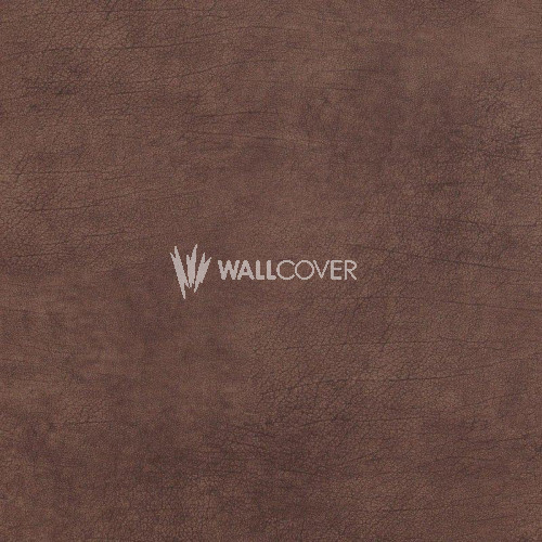 17922 Curious BN Wallcoverings