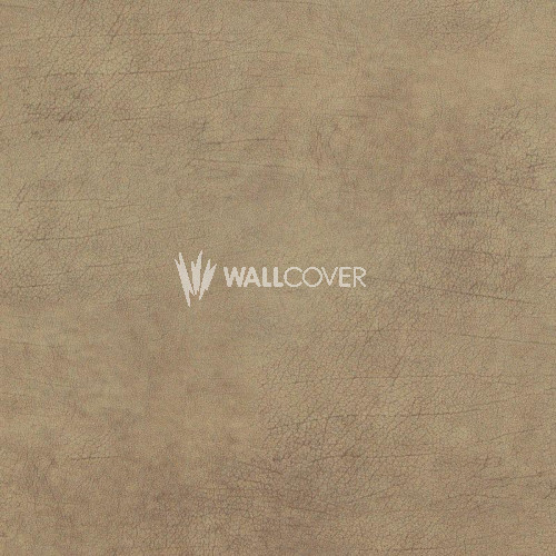 17924 Curious BN Wallcoverings