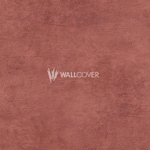 17927 Curious BN Wallcoverings