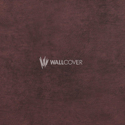17929 Curious BN Wallcoverings