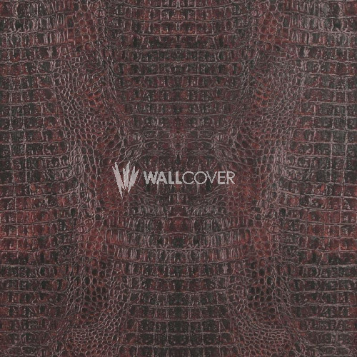 17953 Curious BN Wallcoverings