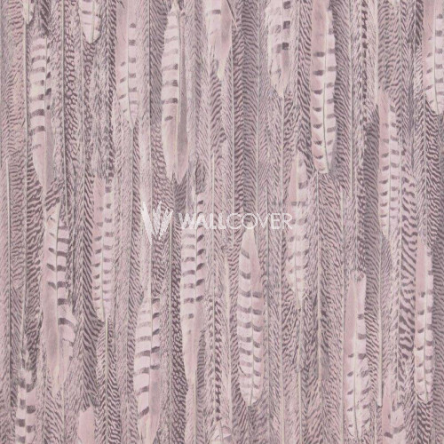 17961 Curious BN Wallcoverings