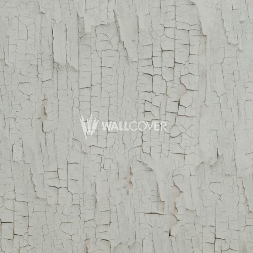 218021 Essentials BN Wallcoverings