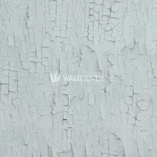 218024 Essentials BN Wallcoverings