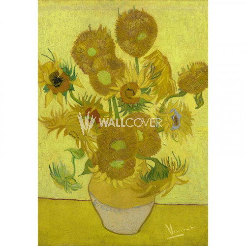 30542 Van Gogh BN Wallcoverings