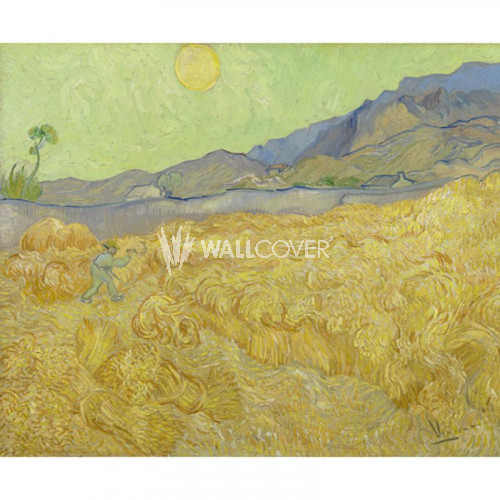 30544 Van Gogh BN Wallcoverings