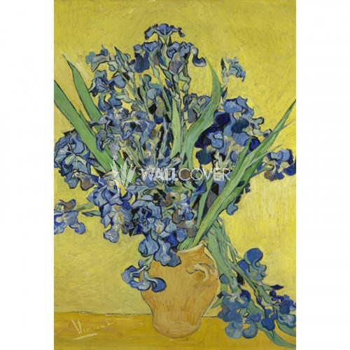 30545 Van Gogh BN Wallcoverings