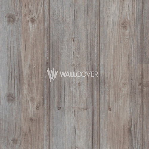 49750 More Than Elements BN Wallcoverings Vliestapete