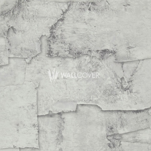 49763 More Than Elements BN Wallcoverings Vliestapete