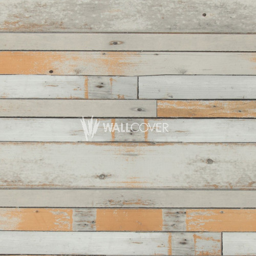 49772 More Than Elements BN Wallcoverings Vliestapete