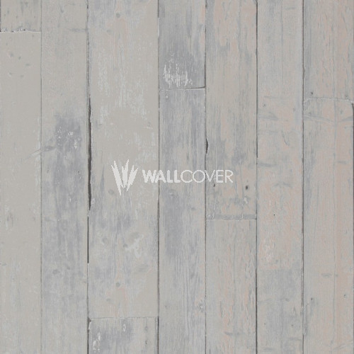49792 More Than Elements BN Wallcoverings Vliestapete