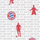 703108 FC Bayern Rasch