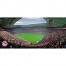 889109 FC Bayern Rasch